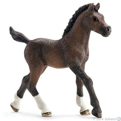 Arabian Foal - Schleich 13762