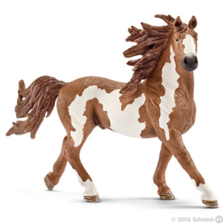 Pinto Stallion - Schleich 13794