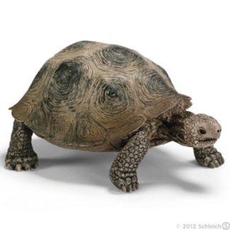 Schleich Giant Tortoise Wild Life figure - Schleich 14601 | LeVida Toys