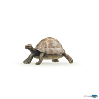 Papo Tortoise Wild Animal Kingdom figure - Papo 50013