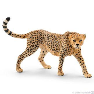 Schleich Cheetah, female Wild Life figure - Schleich 14746 | LeVida Toys