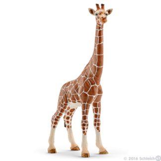 Schleich Giraffe, female Wild Life figure - Schleich 14750 | LeVida Toys
