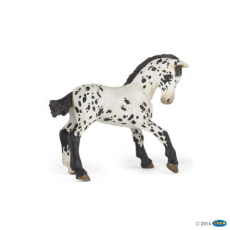 Black Appaloosa Foal - Papo 51540