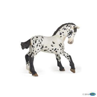 Black Appaloosa Foal - Papo 51540