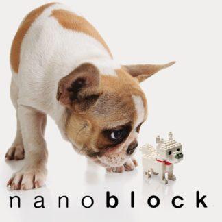 Nanoblock