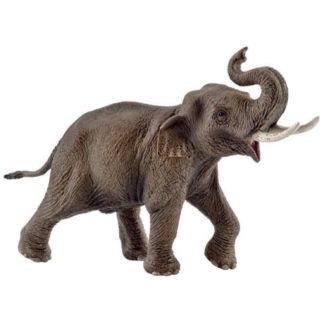 Schleich Asian Elephant, male Wild Life figure - 14754 | LeVida Toys