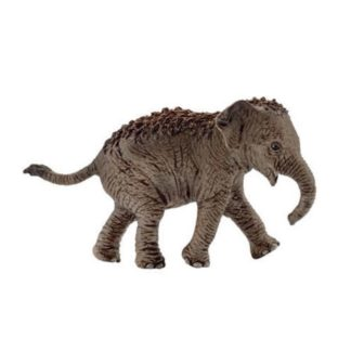 Schleich Asian Elephant, calf Wild Life figure - 14755 | LeVida Toys