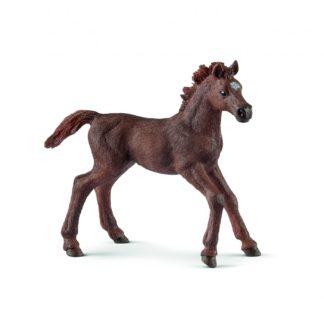 Schleich English Thoroughbred Foal Farm Life figure - 13857   LeVida Toys