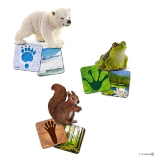 Schleich Wild Life Flash Cards and Animals Set - 42474 | LeVida Toys