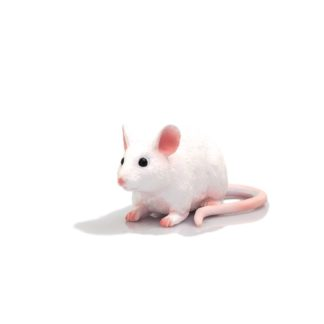 Mouse figure (Animal Planet 387235) | LeVida Toys