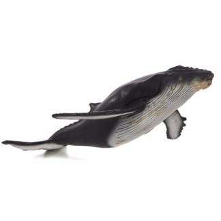 Humpback Whale Deluxe (Animal Planet 387280) | LeVida Toys