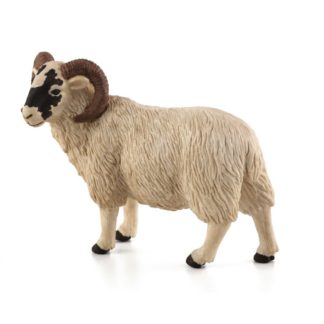 Black Faced Sheep (Ram) (Animal Planet 387081) | LeVida Toys