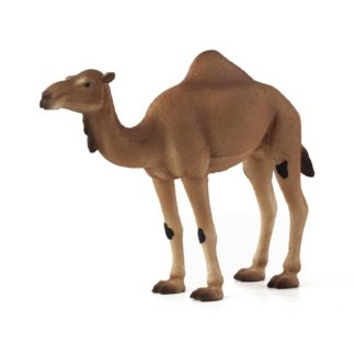 Arabian Camel (Animal Planet 387113) | LeVida Toys