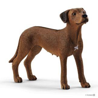 Rhodesian Ridgeback (Schleich 13895) | LeVida Toys