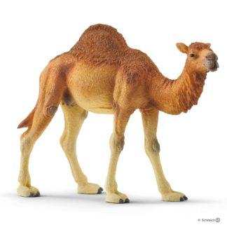 Dromedary Camel (Schleich 14832) | LeVida Toys