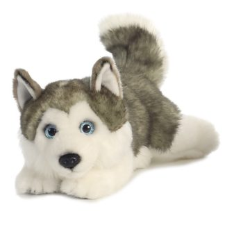 MiYoni Husky Lying 11 Inch soft toy by Aurora | LeVida Toys